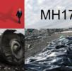 Гаага отказала Москве в просьбе судить в России виновных в крушении Боинга MH17